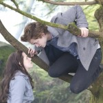6990_crepusculo